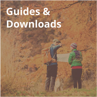 guides-downloads